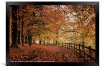 Ryburn in Autumn, Framed Print