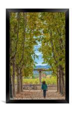 Autumn Walk, Framed Print