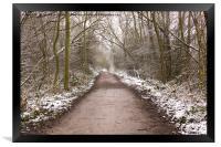 Winter Trail, Framed Print