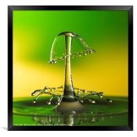 A double water drop collision, Framed Print