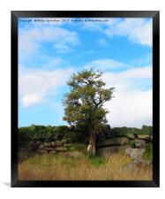 a single tree standing against an old stone wall , Framed Print