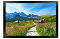 Gasienicowa Valley in Tatry mountains, Poland, Framed Print