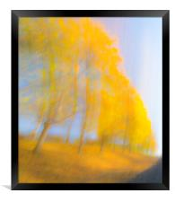 Autum Colours, Framed Print