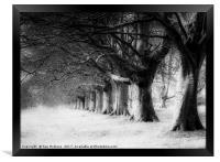 Kingston Lacy, Framed Print