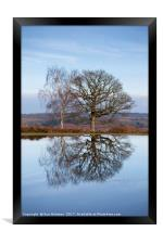 Winter Trees, New Forest, Framed Print