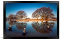 natural mirrors, Framed Print