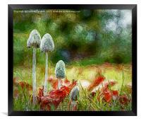 Autumnal Scene                               , Framed Print
