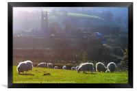 Sheep at Widecombe-in-the-Moor , Framed Print