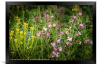 Wildflowers by the Roadside, Framed Print