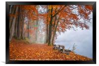 Misty lake shore and autumn woods, Framed Print