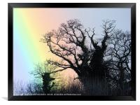 At the bottom of the rainbow, Framed Print
