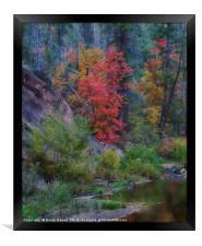 Oak Creek Canyon, Framed Print
