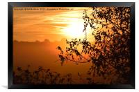 Sunrise looking through a hedge across a field in , Framed Print