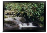 Relaxing zen stream in forest, Framed Print
