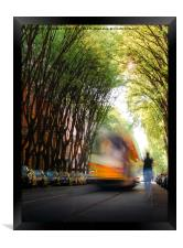 Moving tram on tree-lined path , Framed Print