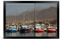 Fishing Boats, Framed Print