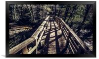 Footbridge leading to the forest, Framed Print