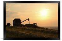 Harvest time, Dorset., Framed Print
