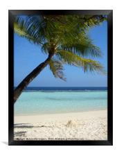 Maldives beach, Framed Print
