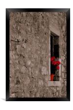 Geranium in Wall, Framed Print