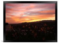 Californian Sunset , Framed Print