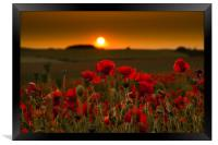 Sunset over poppies in Sussex, Framed Print