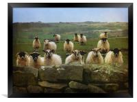 They Must Think They're Getting Fed, Framed Print
