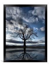 Wintering Oak Tree, Framed Print