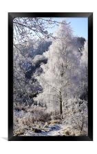 Crystal Tree, Framed Print