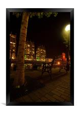 Tree At Salford Quays By Night, Framed Print