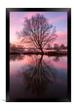 Tree on the River Bure, Framed Print