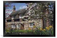 Thatched house with blossom, Framed Print