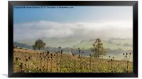 Foggy View from Holly Hill, Framed Print