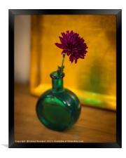 Green Bottle, Framed Print