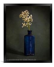 Blue Bottle with White Flowers, Framed Print