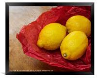 Still Life with Lemons, Framed Print
