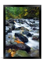 Flow of Autumn, Framed Print