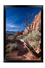 Sunset Trail , Framed Print