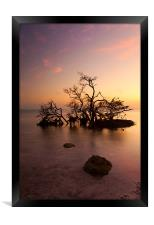 Florida Keys Sunset, Framed Print
