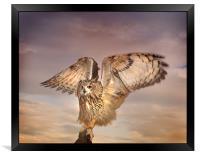 The Eagle Owl Has Landed, Framed Print