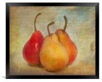 Pears, Framed Print
