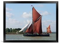 Thames Barge Cabby, Framed Print