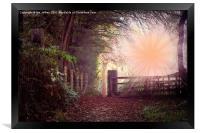 Autumn Rays, Framed Print