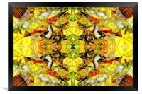 Butterfly, Framed Print