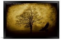 Misty Woodland, Framed Print