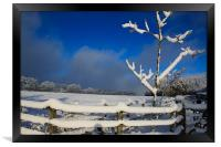 Winters Day, Framed Print