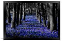 Blue, Framed Print