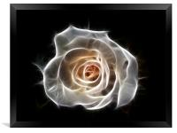 Rose of Light, Framed Print