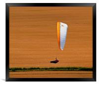 Wheat Field Paraglider, Framed Print