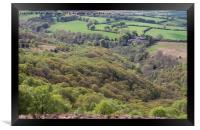 Exmoor woods, Framed Print